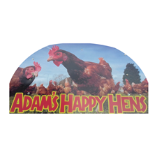 Adam's Happy Hens of Holymoorside